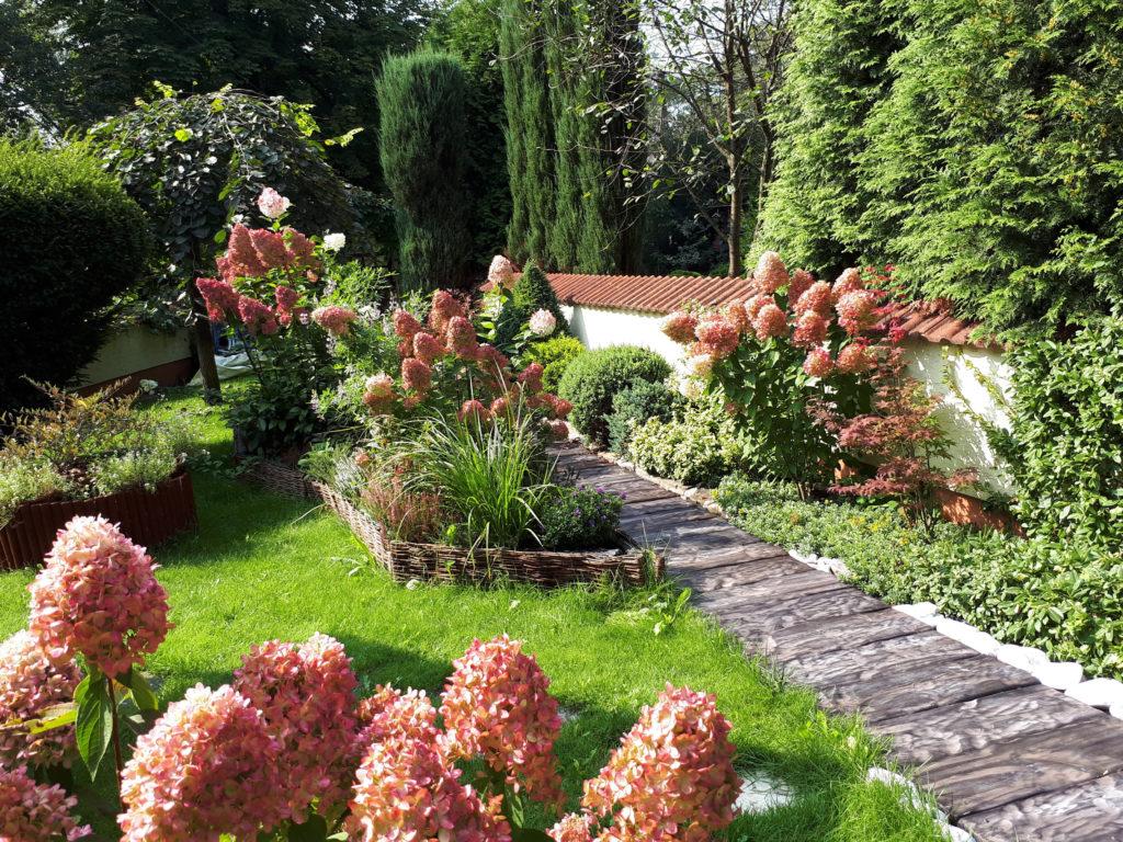 hortiterapia, stres, depresja, ogród, pasja