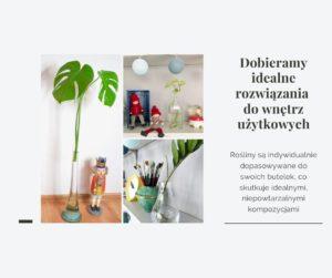 Dobieramy idealne rozwiązania do Twoich wnętrz: Wodna Hodowla Roślin; Cieszyńskie na obcasach, magazyn dla kobiet