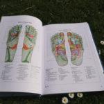 Podręcznik refleksoterapii stóp Hanne Marquardt