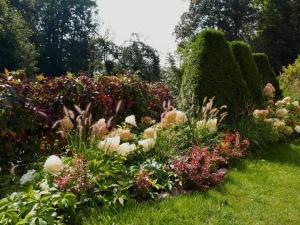 ogród w jesiennej szacie