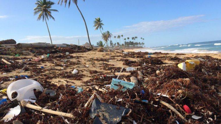 śmieci , plastiki na plaży