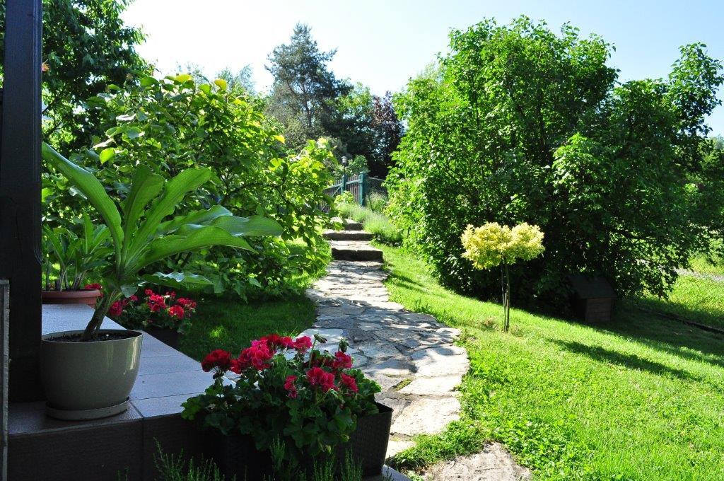 ścieżka w domowym ogródku
